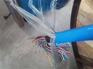 ZR-HYAP53阻燃铠装屏蔽通信电缆
