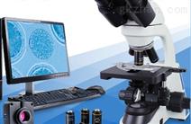 三目生物显微镜XSP-6C