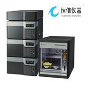 武汉恒信生产HX-1800全自动氨基酸分析仪