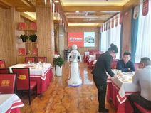 供应河南野生南湾鱼艾米餐饮餐厅送餐机器人