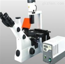 MS900F倒置荧光显微镜
