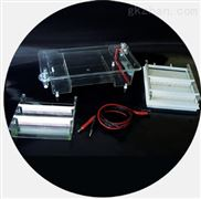 DYCP-31E型琼脂糖水平电泳仪(中号)