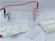 DYCP-31DN型瓊脂糖水平電泳儀(小號)