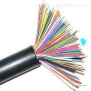 国标HYVP100对屏蔽通信电缆