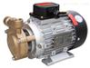 WS-07高溫旋渦泵