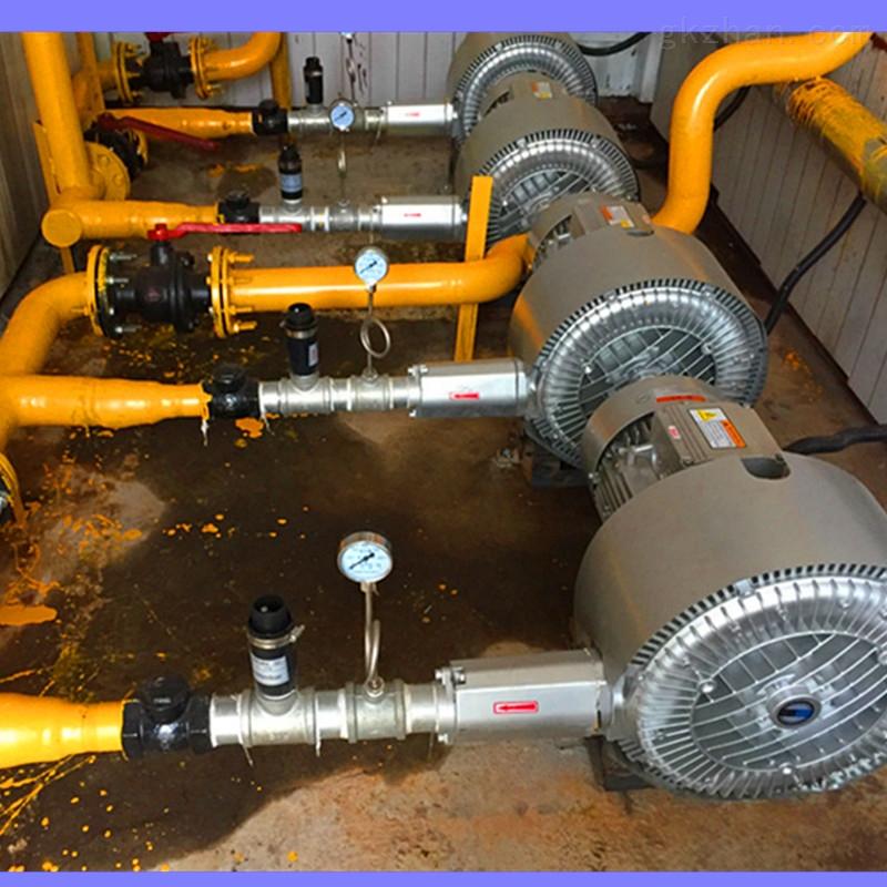 包装机械设备配套双叶轮真空旋涡气泵