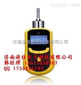 泵吸式甲烷检测仪