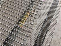 不锈钢链条式网带 螺旋网带 深圳清洗网带
