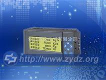 ZYW202-QH热量积算记录仪