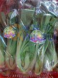 伺服枕式蔬菜包裝機機器套袋