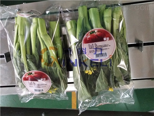 哪家的蔬菜包装机好用?新科力蔬菜包装机是业内的*企业!