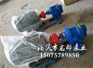 2CY-12/2.5齿轮泵 高压渣油泵龙都高效率
