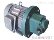 不锈钢齿轮泵,ZYB渣油泵,高压齿轮泵