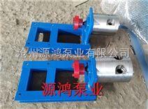 沧州源鸿泵业供应3-0.6圆弧齿轮泵,优质液压齿轮泵批发