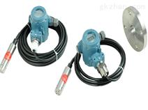 LT10SR-2416投入式/铠装插入式液位变送器