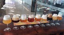 河北啤酒设备厂家 精酿啤酒 设备价格