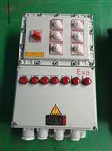 防爆照明动力配电箱BXMD-