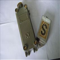 KYCJ-1Z浇灌型防爆磁性限位开关