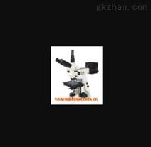 数码正置金相显微镜 型号:HC11/XHC-SV2
