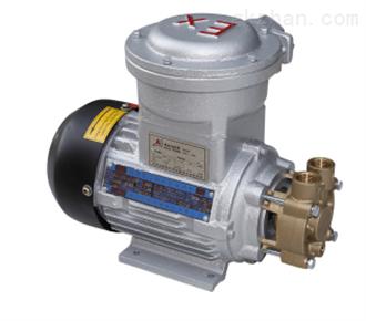 WM-10EX卧式防爆电机泵