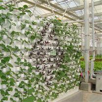 链条组合式墙体基质栽培