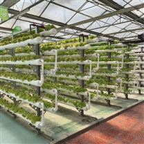 温室无土栽培错层式PVC管立体种植柱