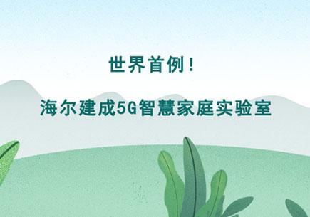 涓���棣�渚�锛�娴峰�寤烘��5G�烘�у�跺涵瀹�楠�瀹�