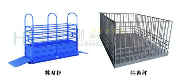 牲畜围栏称重仪