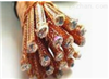 ZR-DJYPVPR10X2X1.0铜芯聚乙烯绝缘聚氯乙烯护套铜丝编织分屏与总屏蔽本安型计算机电缆