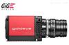 德国AVT短波红外相机GoldeyeG/CL-033SWIR